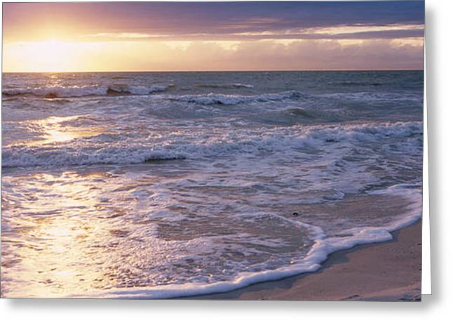 Sunset, Gulf Of Mexico, Florida, Usa Greeting Card by Panoramic Images