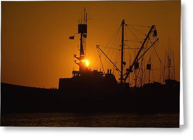 Greeting Card featuring the photograph Sunset Harbor by Marie Leslie