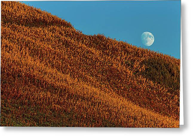 Sunset Hillside Greeting Card by Garry Gay
