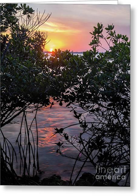 Sunset, Hutchinson Island, Florida  -29188-29191 Greeting Card