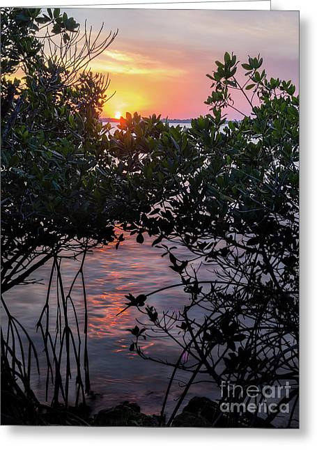 Sunset, Hutchinson Island, Florida  -29188-29191 Greeting Card