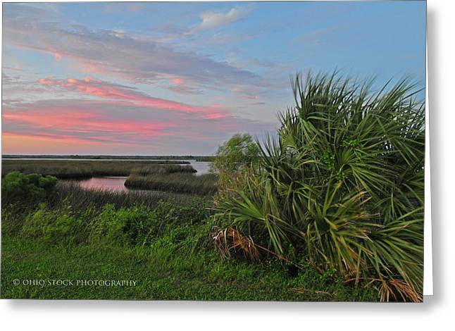 D32a-89 Sunset In Crystal River, Florida Photo Greeting Card