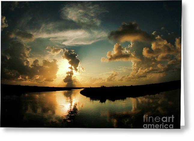 Sunset In Lacombe, La Greeting Card