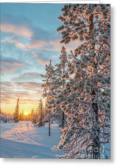 Sunset In Lapland Greeting Card by Delphimages Photo Creations
