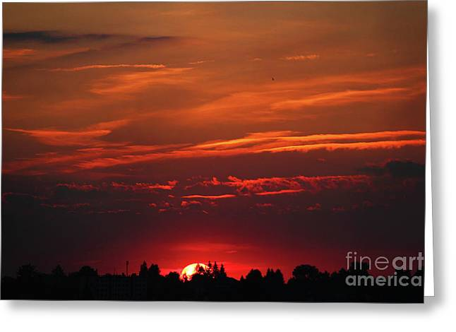 Sunset In The City Greeting Card by Mariola Bitner