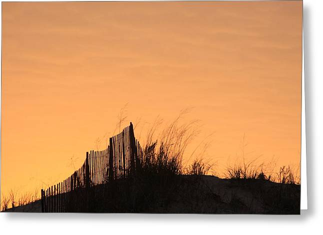 Sunset In The Grass 2 Greeting Card by Chuck Bailey