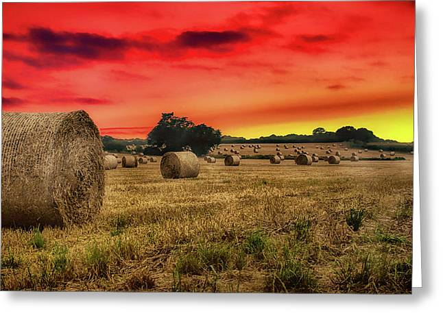 Sunset In The Hay Greeting Card