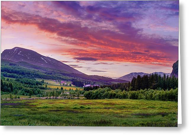 Greeting Card featuring the photograph Sunset In The Meadow by Dmytro Korol