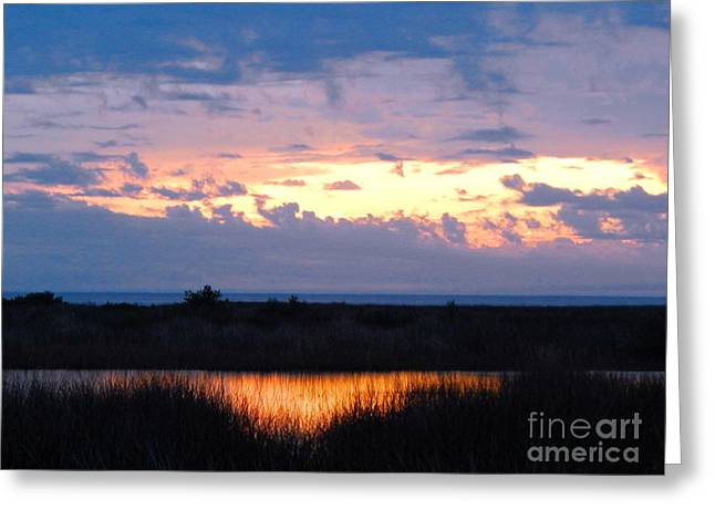 Sunset In The River Sea Beyond Greeting Card by Expressionistart studio Priscilla Batzell