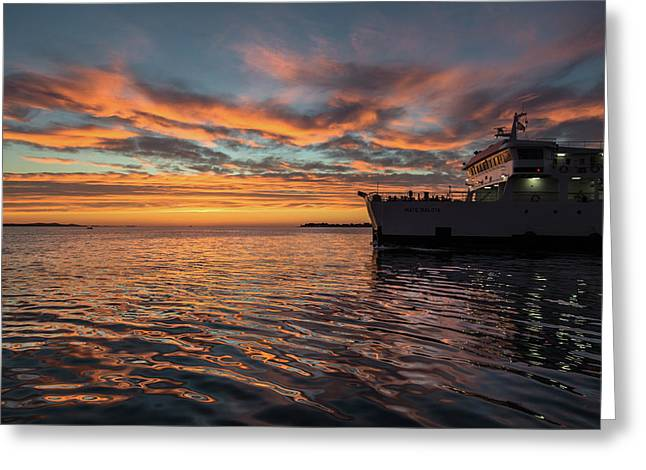 Sunset In Zadar No 1 Greeting Card by Chris Fletcher
