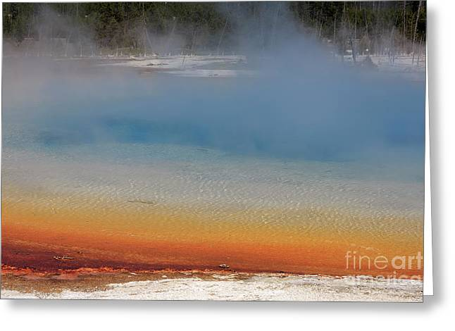 Sunset Lake In Black Sand Basin Yellowstone National Park Greeting Card by Louise Heusinkveld