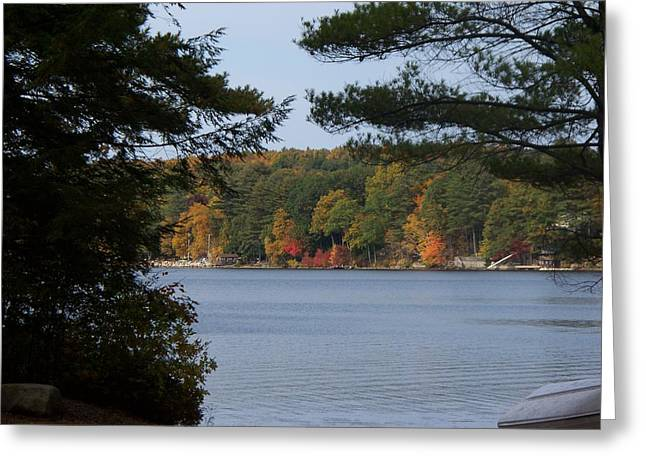 Sunset Lake  Greeting Card by Rosanne Bartlett