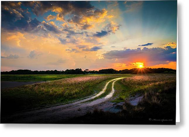 Sunset Lane Greeting Card by Marvin Spates