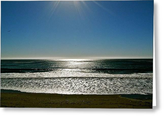 Sunset Light Greeting Card by Liz Vernand
