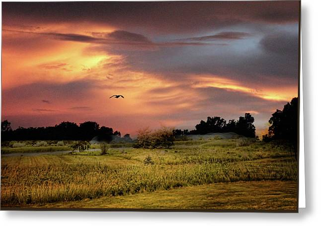 Sunset Meadow Greeting Card by Jessica Jenney