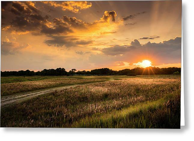 Sunset Meadow Greeting Card by Marvin Spates