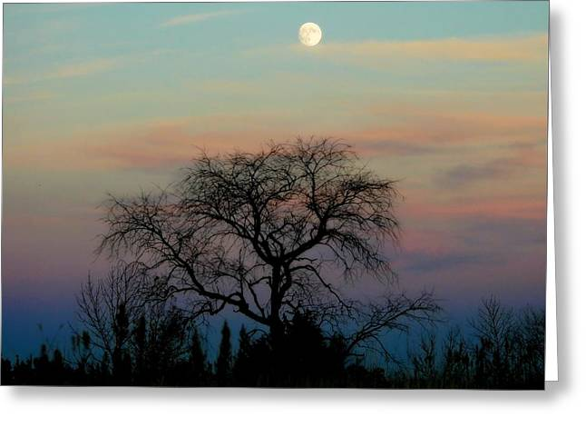 Sunset Moon Greeting Card