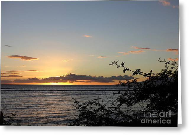 Sunset Off Lipoa Greeting Card by Fred Wilson