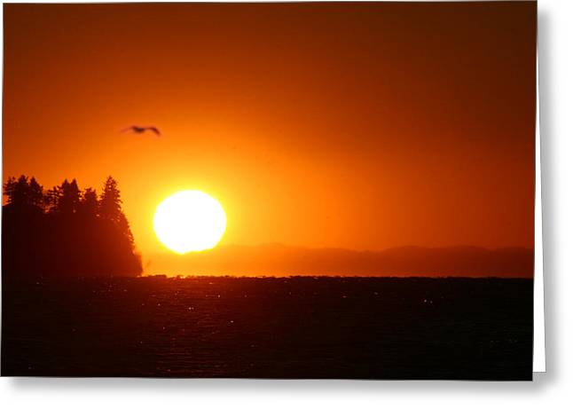 Sunset On Birch Bay Greeting Card by Julius Reque
