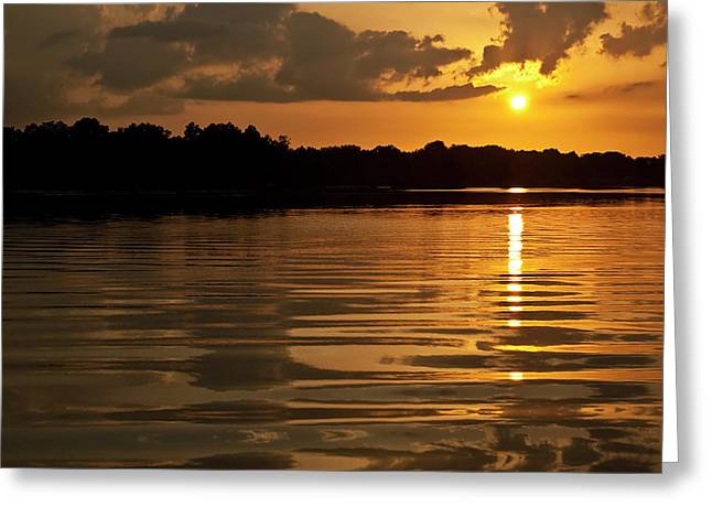 Rural Setting Greeting Cards - Sunset on Hillsborough River Greeting Card by Carolyn Marshall