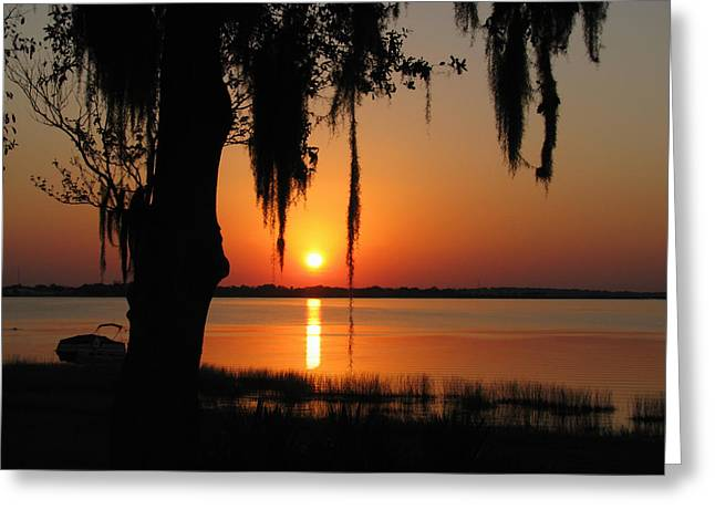 Sunset On Lake Minneola Greeting Card by Peg Urban