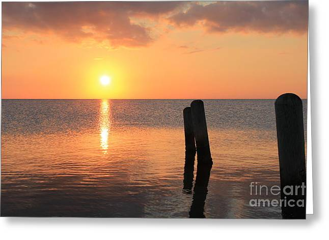 Greeting Card featuring the photograph Sunset On Pimlico Sound by Laurinda Bowling