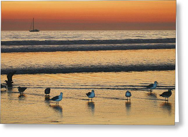 Sunset On The Beach Greeting Card by Marlana Holsten