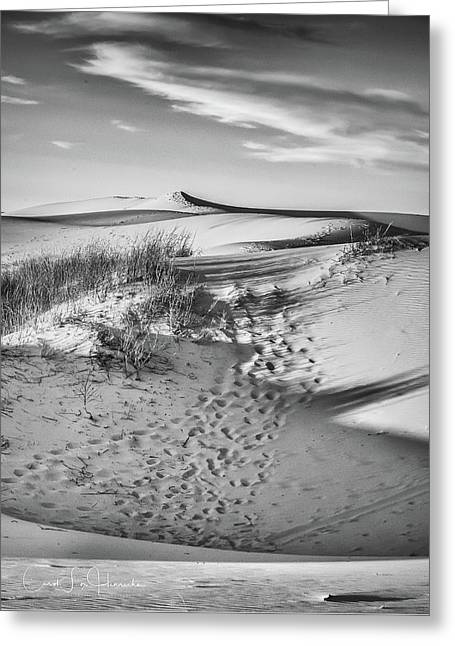 Sunset On The Dunes Greeting Card