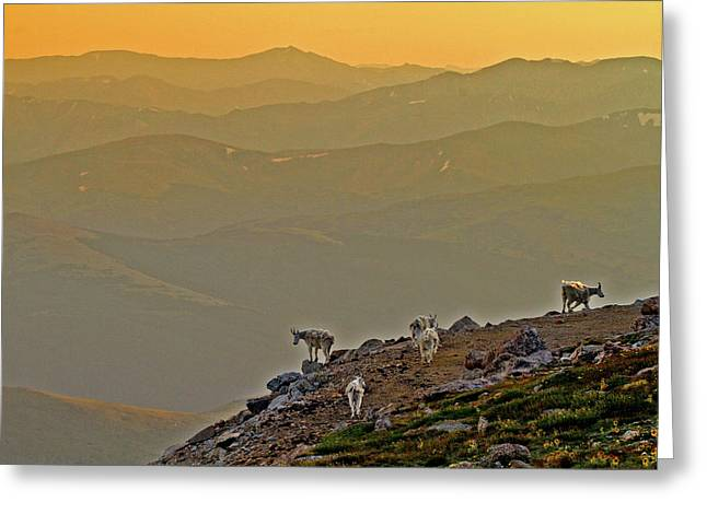 Greeting Card featuring the photograph Sunset On The Edge by Scott Mahon