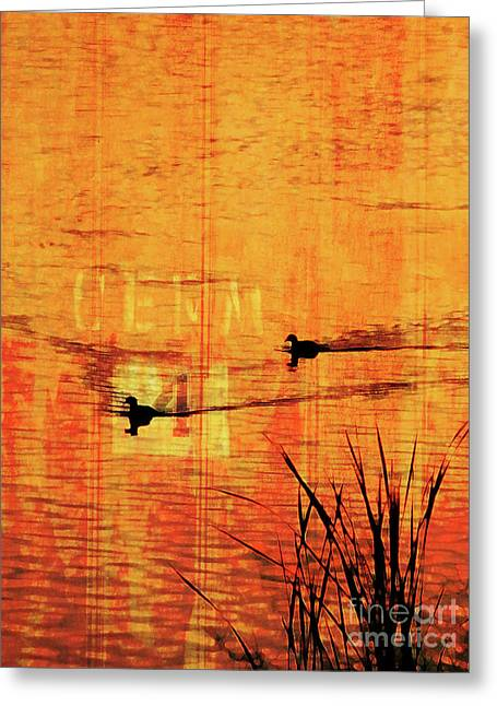 Sunset On The Lake Greeting Card by Robert Ball
