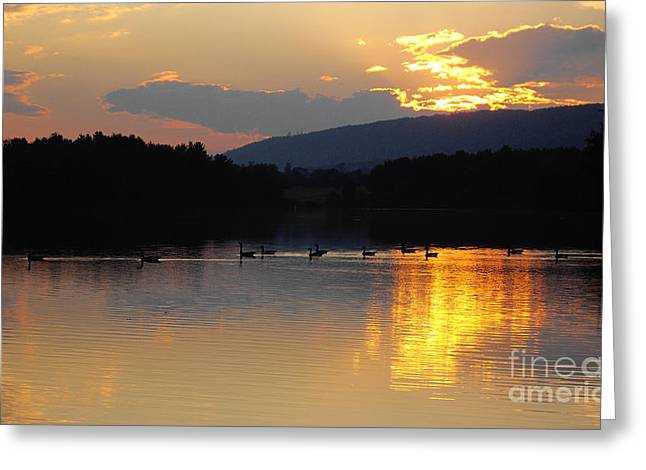 Greeting Card featuring the photograph Sunset On The Lake by Vilas Malankar
