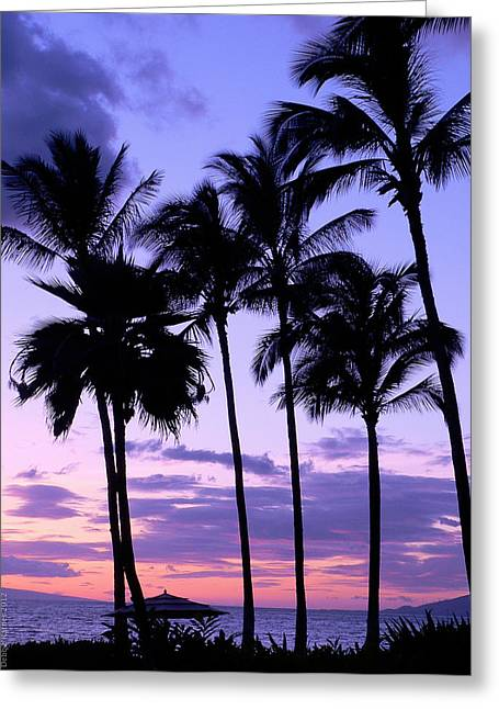 Greeting Card featuring the photograph Sunset On The Palms by Debbie Karnes