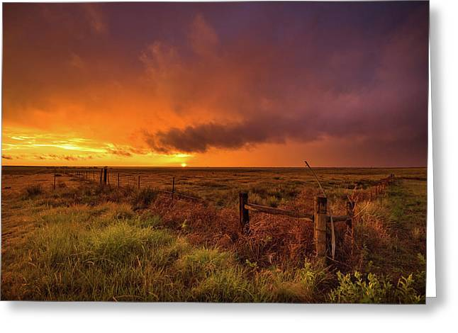Sunset On The Plains Greeting Card by Sean Ramsey