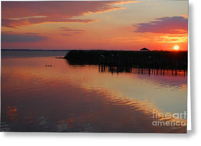 Sunset On The Sound Greeting Card by Linda Mesibov
