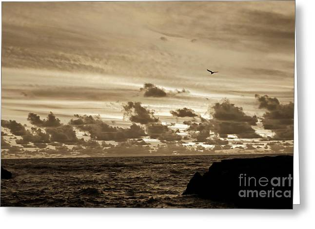 Greeting Card featuring the photograph Sunset On The Tasman Sea by Yurix Sardinelly