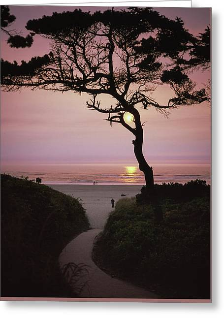 Sunset On The Zen Path Greeting Card