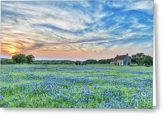 Sunset Over Bluebonnets And Farmhouse Greeting Card by Tod and Cynthia Grubbs