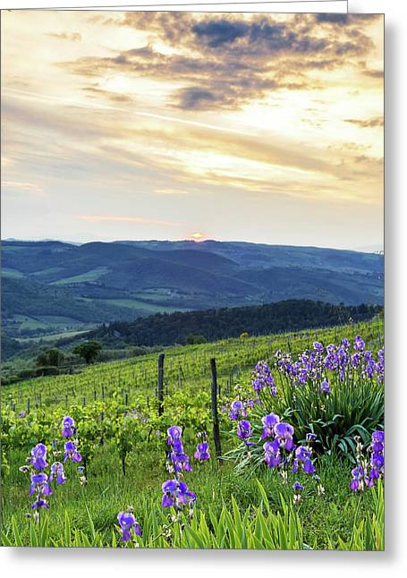 Sunset Over Chianti With Iris Greeting Card