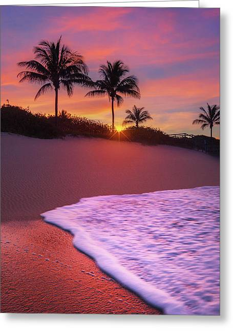 Greeting Card featuring the photograph Sunset Over Coral Cove Park In Jupiter, Florida by Justin Kelefas