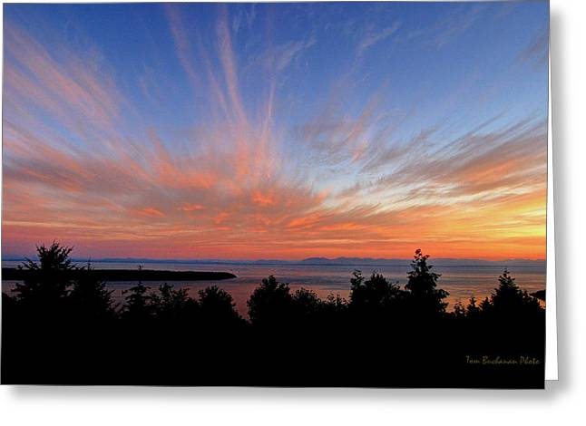Sunset Over Cypress Greeting Card by Tom Buchanan
