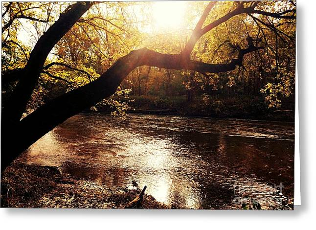 Sunset Over Flat Rock River - Southern Indiana Greeting Card by Scott D Van Osdol