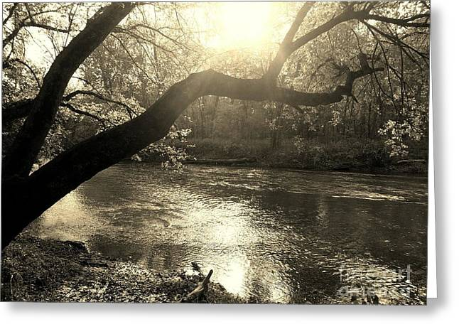 Sunset Over Flat Rock River - Southern Indiana - Sepia Greeting Card by Scott D Van Osdol