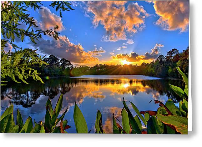 Greeting Card featuring the photograph Sunset Over Hidden Lake In Jupiter Florida by Justin Kelefas