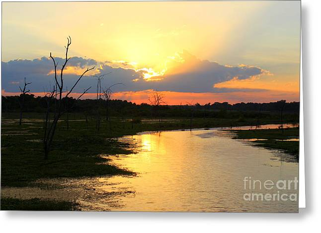 Sunset Over Lake Fork Greeting Card by Kathy  White