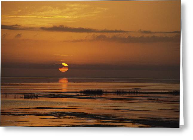 Sunset Scenes. Greeting Cards - Sunset Over Lake Okeechobee Greeting Card by Medford Taylor