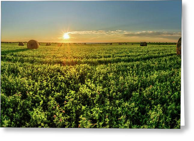 Greeting Card featuring the photograph Sunset Over Prince Edward Island Clover by Chris Bordeleau