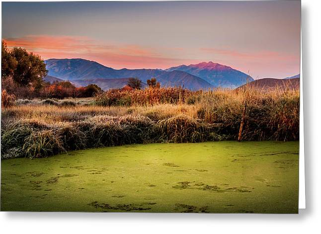 Sunset Over The Duck Marsh Greeting Card