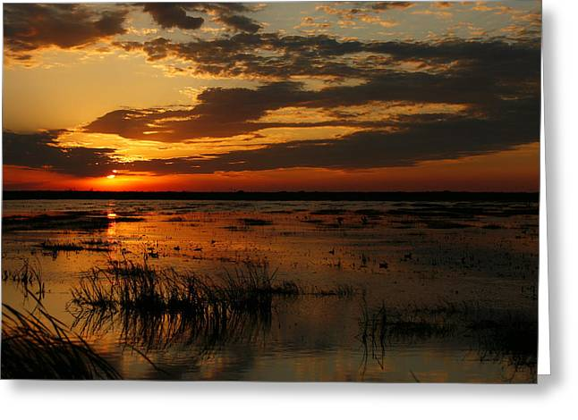 Sunset Over The Marsh Greeting Card