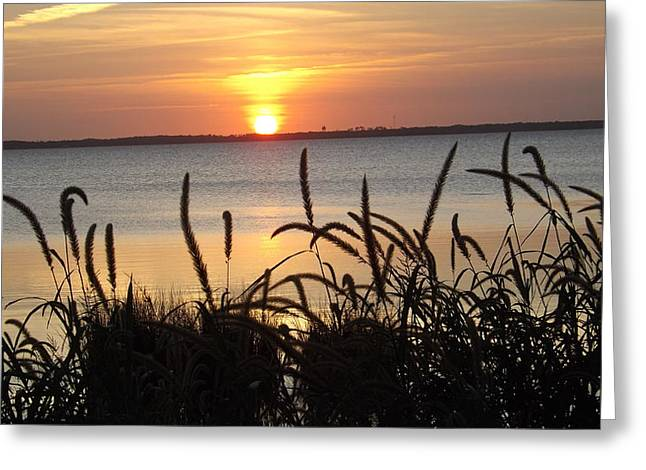 Sunset Over The Sound  Greeting Card by Joyce Wasser