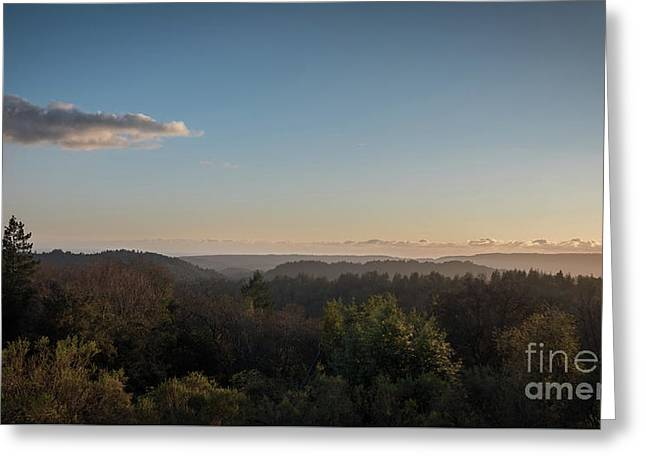 Sunset Over Top Of Dense Forest Greeting Card